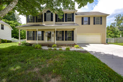 Knoxville Single Family Home For Sale: 742 Whitesburg Drive