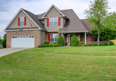 Knoxville Single Family Home For Sale: 1075 Paxton Drive
