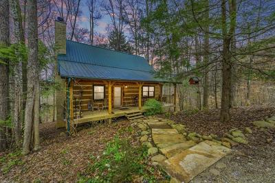 Sevierville Single Family Home For Sale: 2983 Walden Flats Way