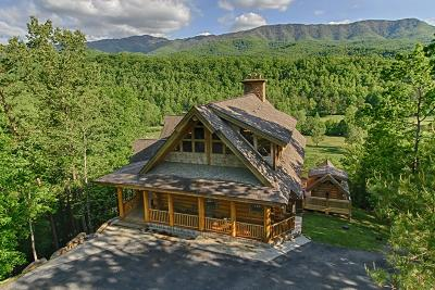 Gatlinburg Single Family Home For Sale: 313 Overview Drive