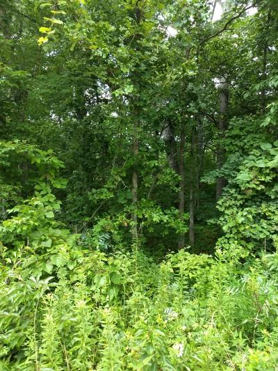Residential Lots & Land For Sale: 9211 Hondo Drive