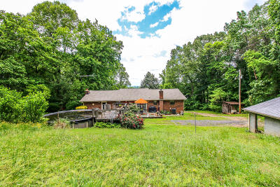 Bean Station, Thorn Hill, Rutledge, Washburn, Blaine Single Family Home For Sale: 2170 New Cornith Rd