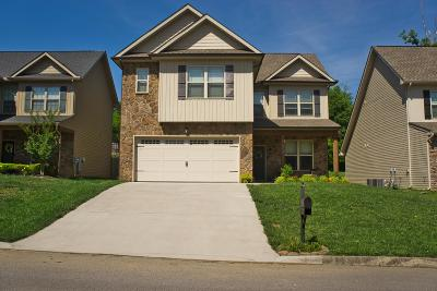 Knoxville Single Family Home For Sale: 1538 Yarnell Station Blvd