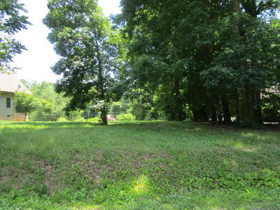 Residential Lots & Land For Sale: 317 Tigitsi Way