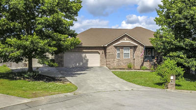 Maryville Single Family Home For Sale: 110 Knoll Lane