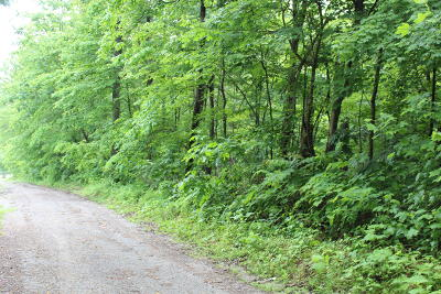 Campbell County Residential Lots & Land For Sale: 2304 Shady Cove Rd