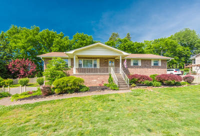 Knoxville Single Family Home For Sale: 925 Lake Haven Rd