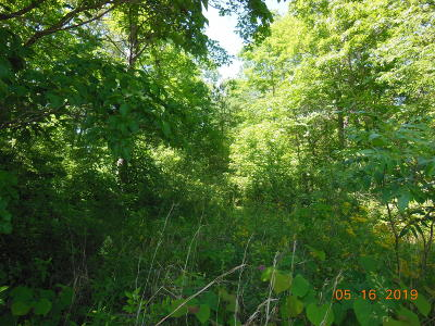 Residential Lots & Land For Sale: 1162 Red Cloud Road Rd