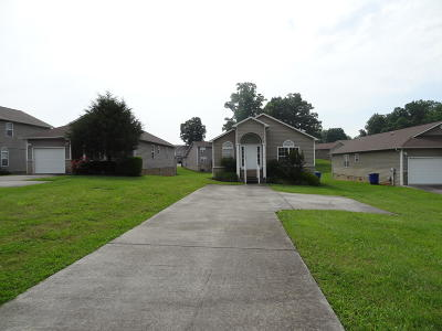 Sevierville Single Family Home For Sale: 1315 William Holt Blvd