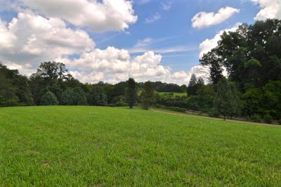 Residential Lots & Land For Sale: Marble Hill Rd