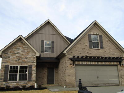 Lenoir City Single Family Home For Sale: 1016 Jacksonian Way Lot 51r