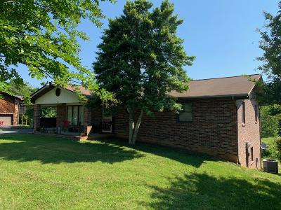 Sevierville Single Family Home For Sale: 464 Connatser Lane