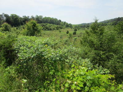 Jefferson County Residential Lots & Land For Sale: 900 French Mill Rd