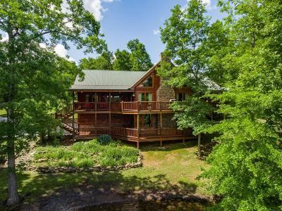 Single Family Home For Sale: 251 Sycamore
