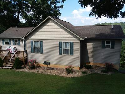 Lafollette Single Family Home For Sale: 310 Mariner Point Rd