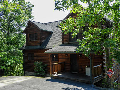 Sevierville Single Family Home For Sale: 3138 Mountain Grace Lane