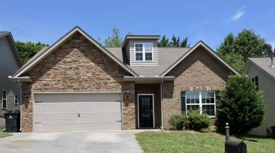 Knoxville Single Family Home For Sale: 4715 Pecanwood Way