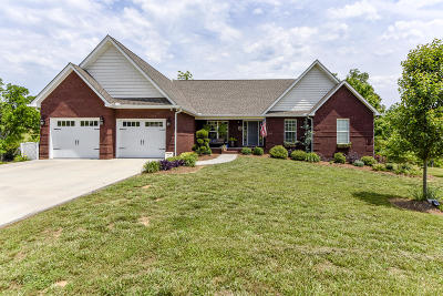 Greenback Single Family Home For Sale: 918 Houston Springs Rd
