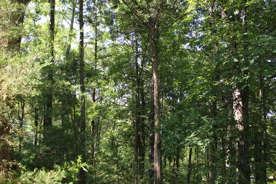Dandridge Residential Lots & Land For Sale: Tranquility Trail