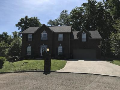 Knoxville Single Family Home For Sale: 2804 Cypress Point Point
