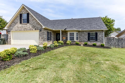 Maryville Single Family Home For Sale: 1228 Mishas Way