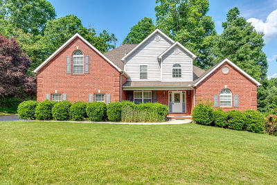 Knoxville Single Family Home For Sale: 6528 Virginia Lee Lane