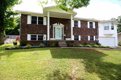 Knoxville Single Family Home For Sale: 1312 Whittbier Drive