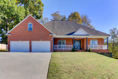 Anderson County Single Family Home For Sale: 135 Apple Tree Drive
