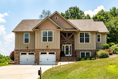 Lenoir City Single Family Home For Sale: 255 Sycamore Way