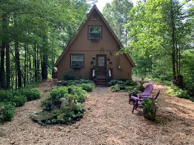 Tellico Plains Single Family Home For Sale: 128 Tall Pine Circle