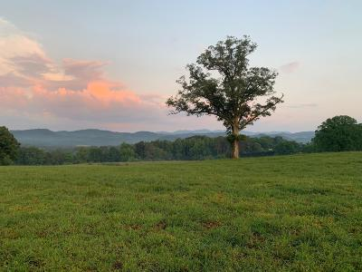 Tellico Plains Residential Lots & Land For Sale: Fairview Rd