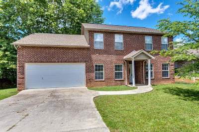 Knoxville Single Family Home For Sale: 7112 Wrens Creek Lane
