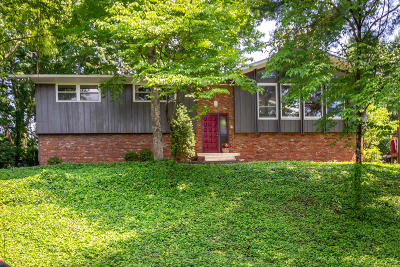 Knoxville Single Family Home For Sale: 5312 Yosemite Trail Tr