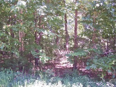Residential Lots & Land Pending - Continue To Show: 509 Skiatook Court