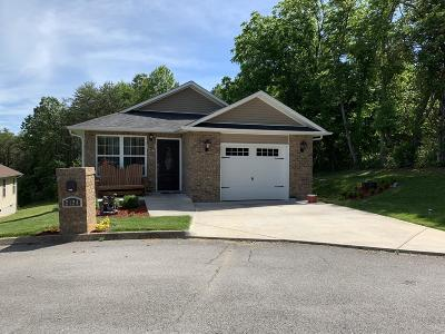 Sevierville Single Family Home For Sale: 2124 Covenant Drive