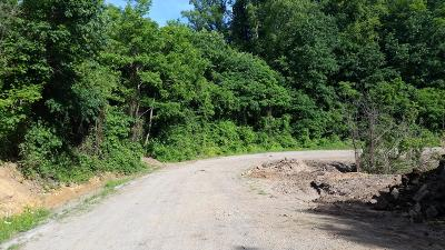 Anderson County, Campbell County, Claiborne County, Grainger County, Hancock County, Hawkins County, Jefferson County, Union County Residential Lots & Land For Sale: Luther Villa Rd