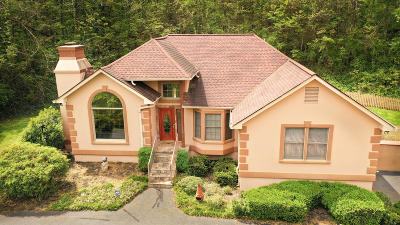 Knoxville Single Family Home For Sale: 607 Canton Hollow Rd