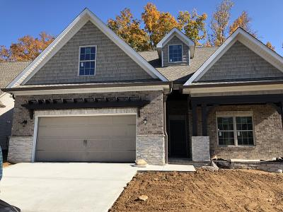 Lenoir City Single Family Home For Sale: 1251 Jacksonian Way Lot 30