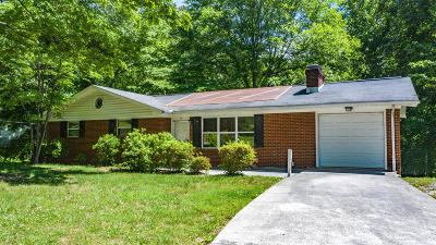 Anderson County, Campbell County, Claiborne County, Grainger County, Union County Single Family Home For Sale: 39 E Norris Rd