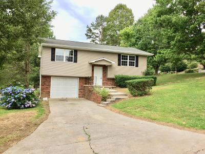 Tazewell Single Family Home For Sale: 205 Dogwood Drive