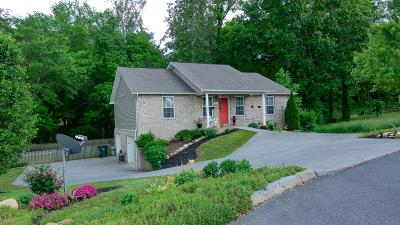 Sevier County Single Family Home For Sale: 2255 Murphys Chapel Drive