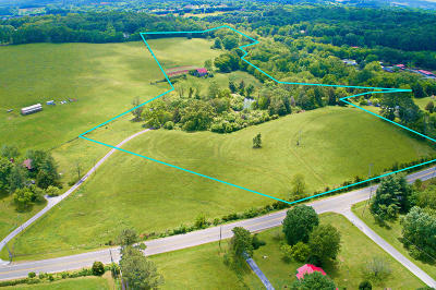 Residential Lots & Land For Sale: 11688 Us-11