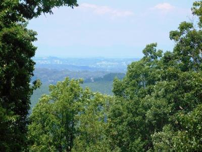Maryville Residential Lots & Land For Sale: 3745 Chilhowee Trail Tr