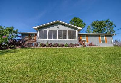 Sevier County Single Family Home For Sale: 1627 Rebel Hill Drive