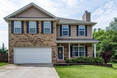 Knoxville Single Family Home For Sale: 8560 Golden Cloud Lane