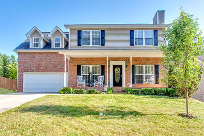 Knox County Single Family Home For Sale: 2924 Oakleigh Township Drive