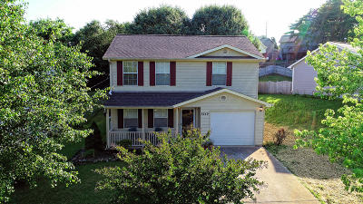 Knox County Single Family Home For Sale: 6249 Vandemere Drive