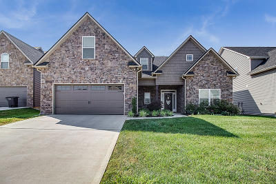 Knoxville Single Family Home For Sale: 2678 Brooke Willow Blvd