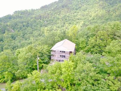 Sevierville Single Family Home For Sale: 1146 Eagle Point