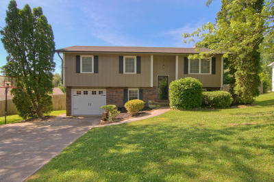 Knoxville Single Family Home For Sale: 613 Arlington Drive